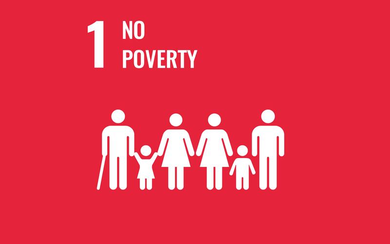 SDG Goal1