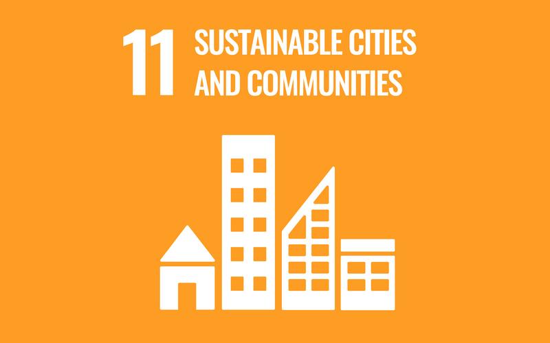SDG Goal11