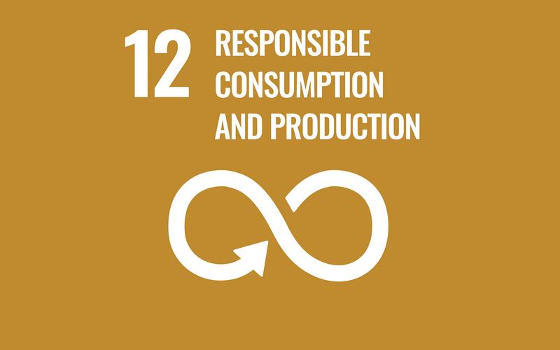 SDG Goal12