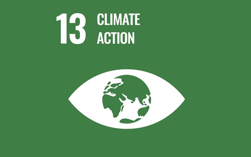 SDG Goal13
