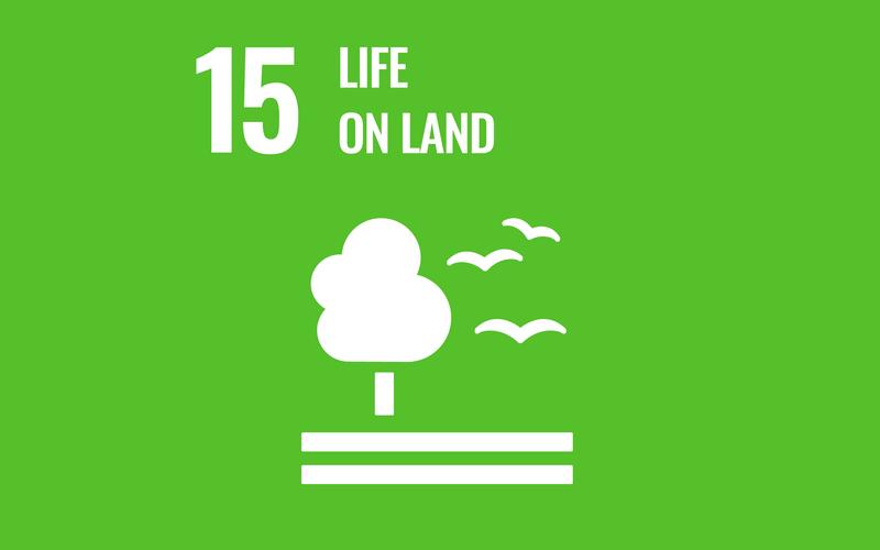 SDG Goal15