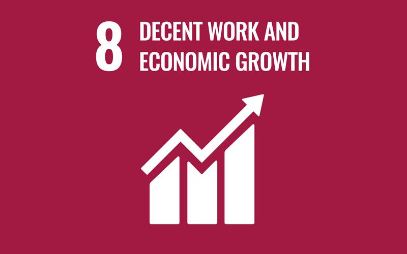SDG Goal8