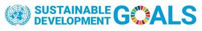 SDG UN logo horizontal
