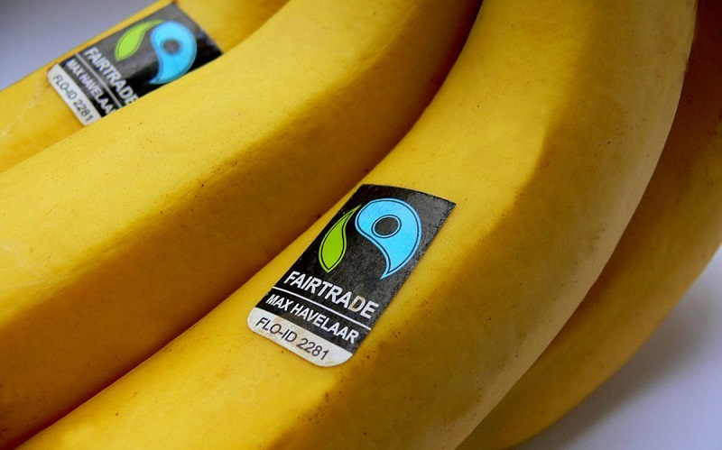 Image of Fairtrade banana