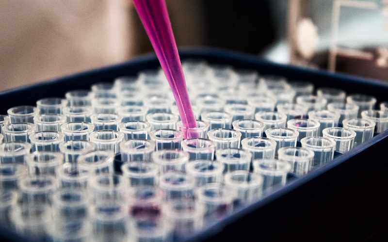 An image of a lab