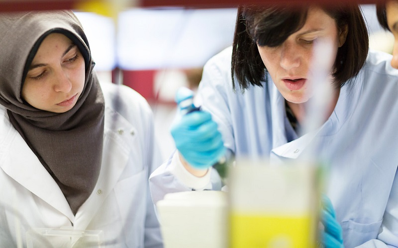 Students working in UCL Lab