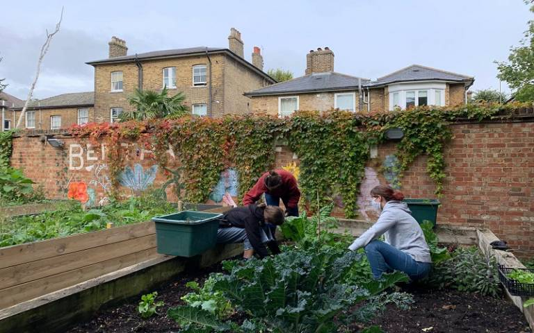 Three people weeding a vegetable bed, with vegetables growing in the foreground and an ivy covered wall in the background with the name Bentham's Farm painted on.