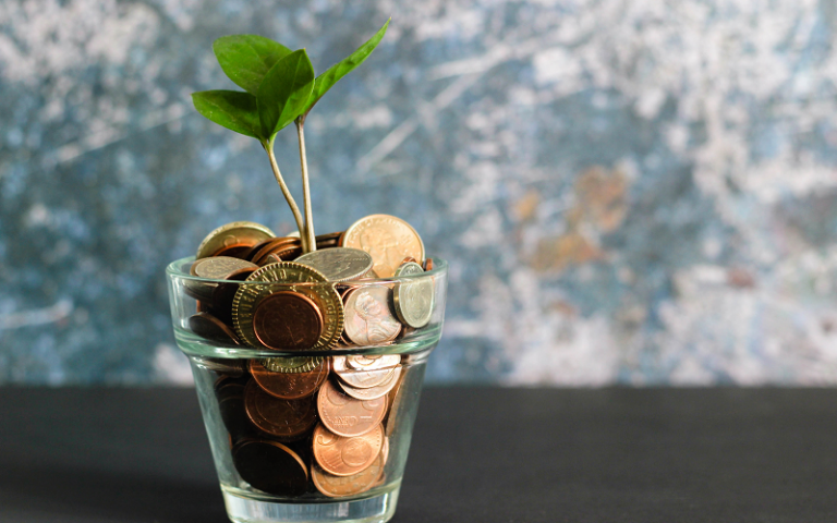 Small plant growing from a cup of coins