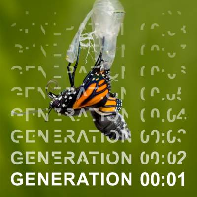 Butterfly emerging from cocoon with Generation 00:01 written across