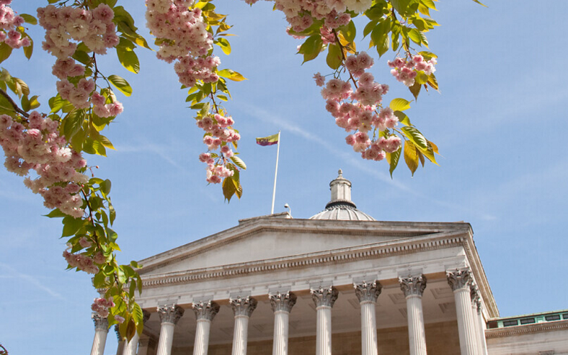 Photo of the UCL Portico taken through the branches of a blossom tree