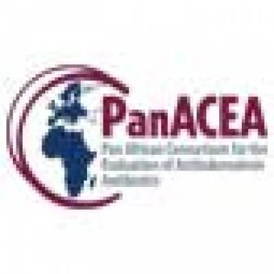 small-panacea