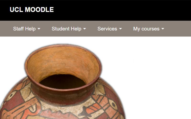 Screenshot of Moodle