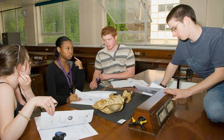Students solving problems in the Grant Museum