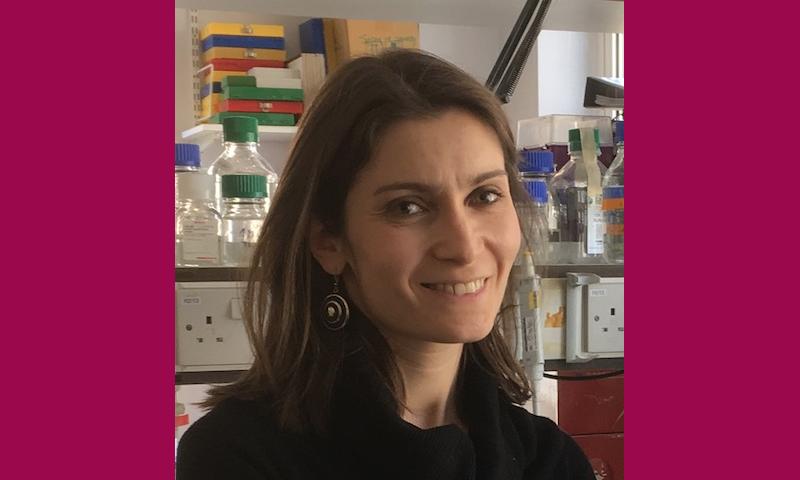 Dr Michela Mazzon