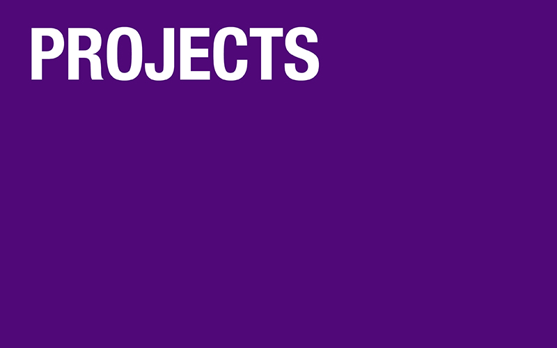 Text: Projects