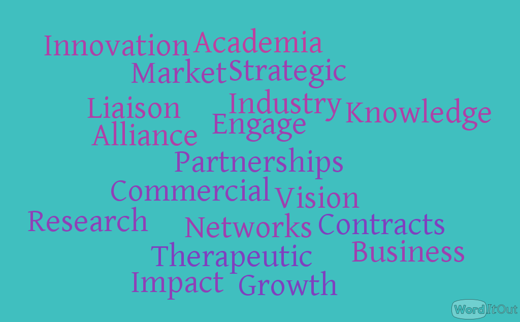 Business and Innovation Group