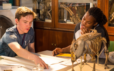 Two young students work at a desk together in the Grant Museum of archeology.