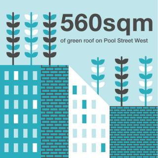 560 square metres of green roof on Pool Street West