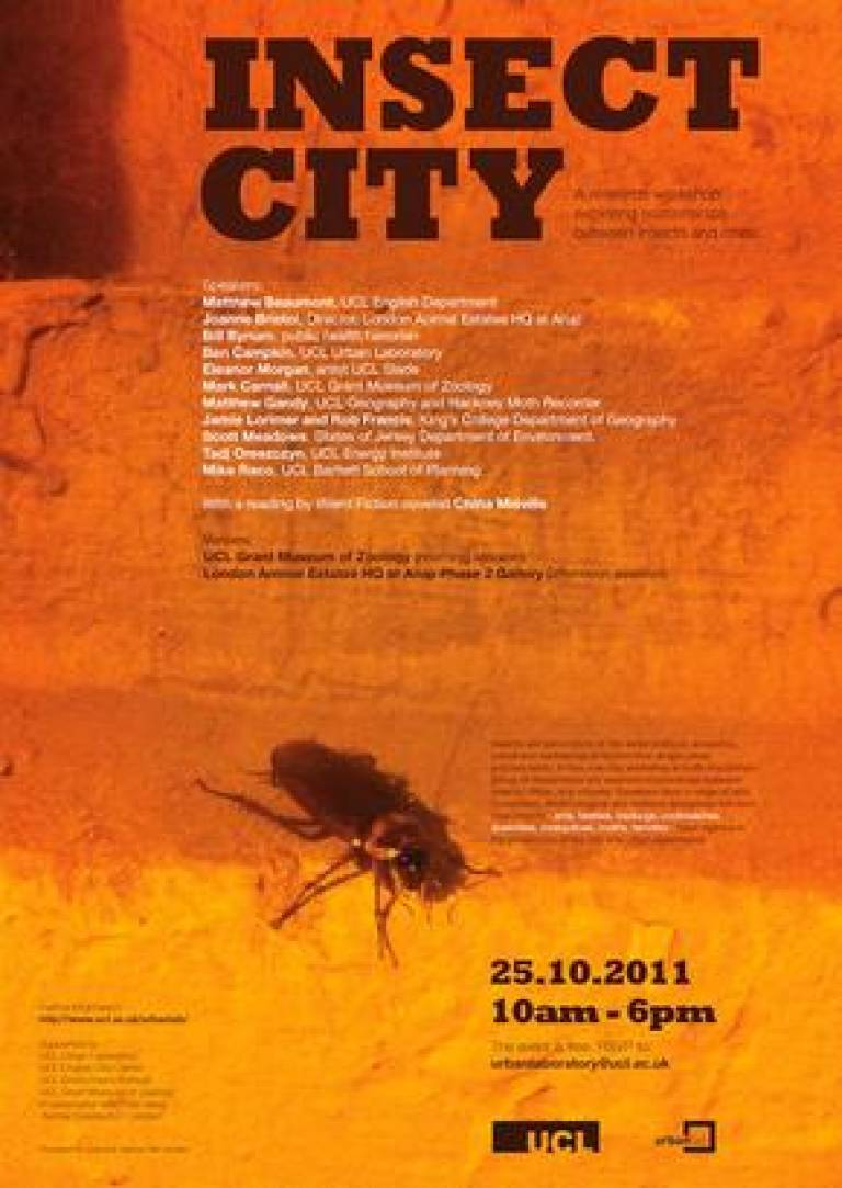 Insect City