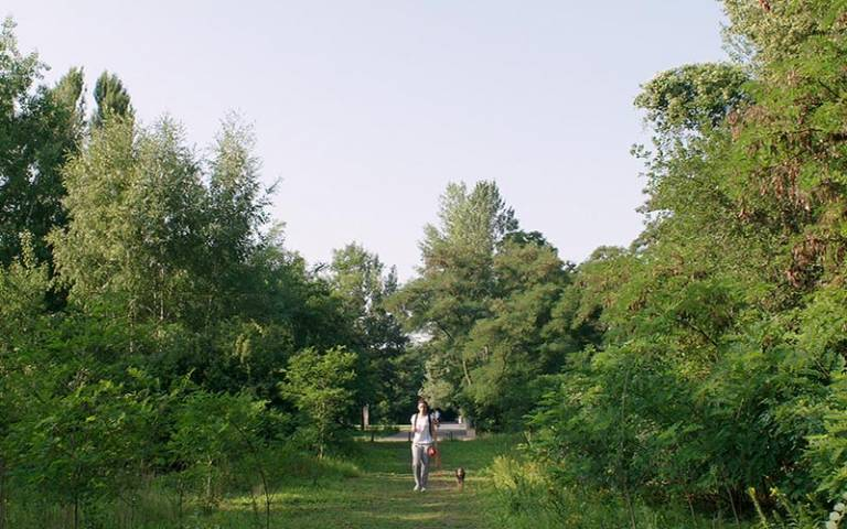 Gleisdreieckpark, still from the film 'Natura Urbana'