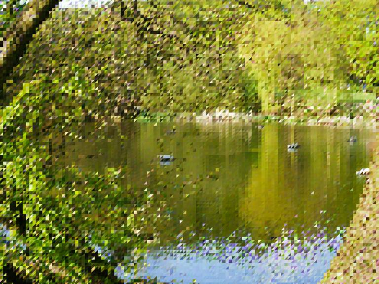 Pixellated Image of Kenwood Ladies' Bathing Pond, near to Hampstead, Camden, London, 21 April 2010