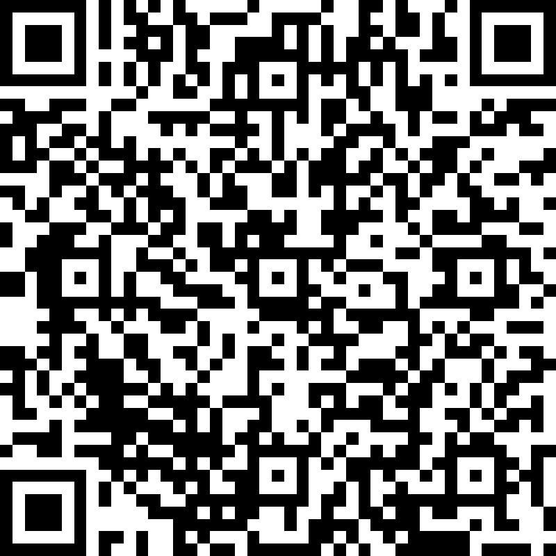 Feminist Cities priority area form QR code