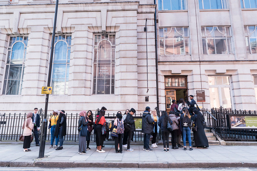 UCL's Transition Mentor Programme