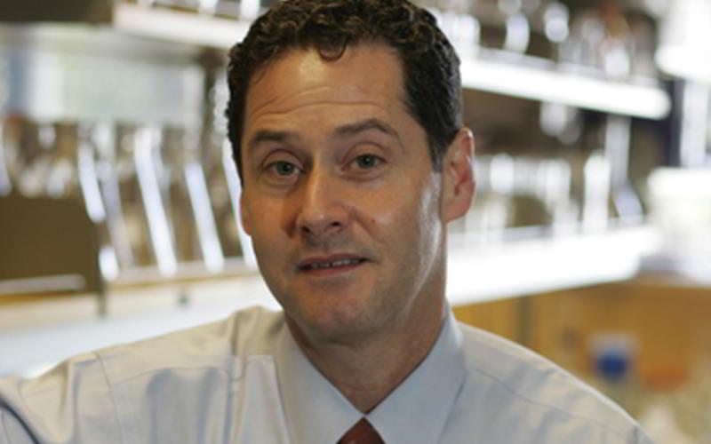 Professor David H Rowitch