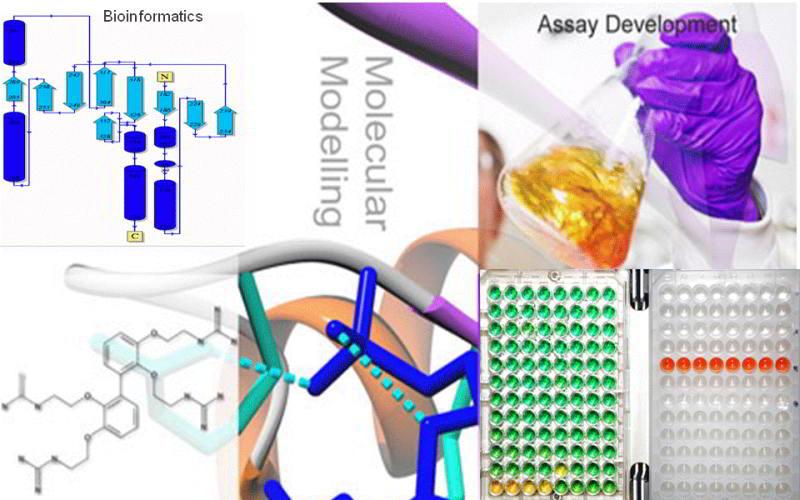 MRes Drug Design