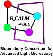 B_CALM Logo