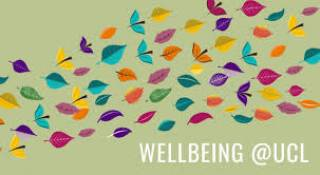 Wellbeing at UCL