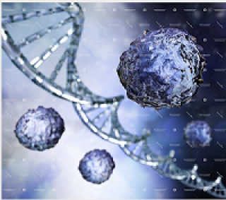 image stem cells and pluripotency