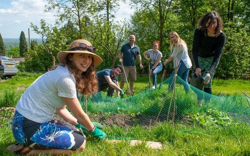 staff in community garden
