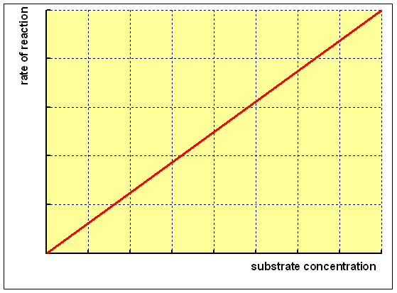 relationship between enzyme activity and substrate concentration
