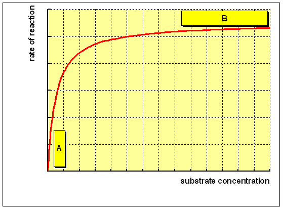 the rate of reaction and the concentration of substrate, as shown below:
